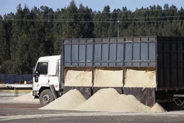 Procesamiento y transporte de biomasa: Tecnología y logística como fuentes de eficiencia